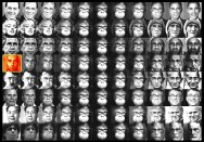 Homo Sapiens Acrylic Spray on steel wool