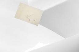 Istituzionalized n.08 Archival inkjet 80x80 2016 £750